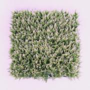 1 м2 искусственной травы из 4-х модулей 50×50 см