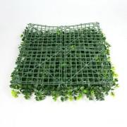 4 модуля на 1 кв.м зеленой изгороди Барбарис зеленый