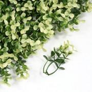 Элемент модульной зеленой изгороди Самшит Faulkner белый