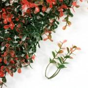 Элемент модульной зеленой изгороди Самшит Faulkner красный
