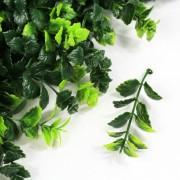 Элемент зеленой изгороди Барбарис зеленый