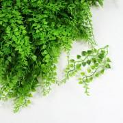 Элемент зеленой изгороди Микс 38