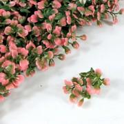 Элемент зеленой изгороди Самшит зелено-розовый