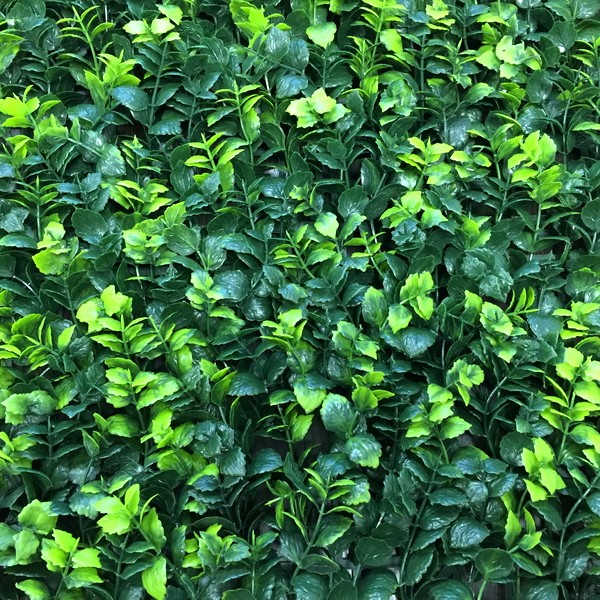 Искусственная изгородь Барбарис Тунберга зеленый
