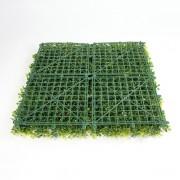 4 модуля на 1 кв.м. зеленой изгороди Самшит желто-зеленый