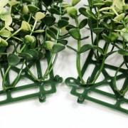 Соединение модулей зеленой изгороди Самшит Фолкнер белый