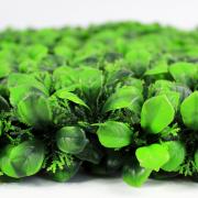 Высота покрова модульной травы Базилик зеленый 5 см