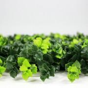 Высота покрова модульной зелени Барбарис зеленый 5 см