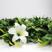 Высота покрова модульной зелени Лилии белые 7 см