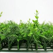 Высота покрова модульной зелени Микс 33 зеленый 7 см