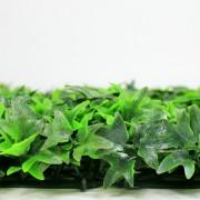 Высота покрова модульной зелени Плющ зеленый 6 см