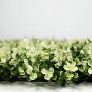 Высота покрова модульной зелени Самшит Фолкнер белый 5 см