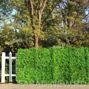 Забор из искусственной зелени в модулях Микс 33