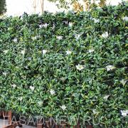 Зеленая искуственная изгородь в модулях Лилия белая